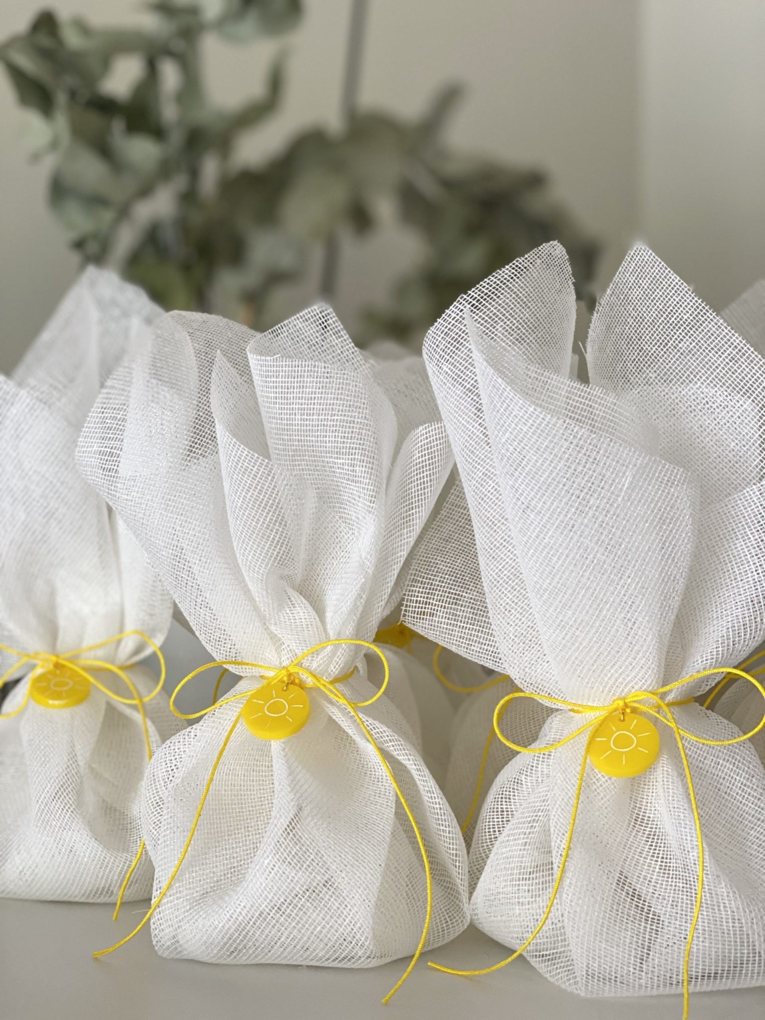 you-are-my-sunshine-baptism-favors
